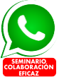Seminario especializado en colaboración eficaz
