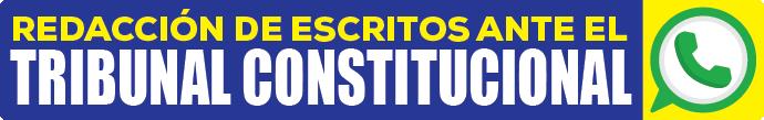 curso especializado en procesos constitucionales